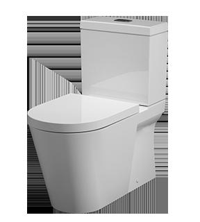 toilets-blocked
